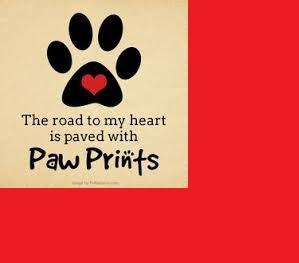 Day 98:  Puppy love…
